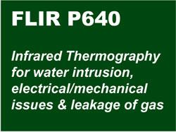 FLIR-P640-Infrared-Thermography-art-1