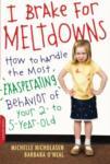 Meltdowns book